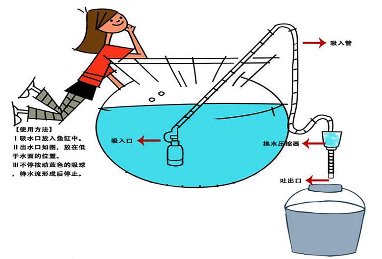 陶瓷  大缸换水图