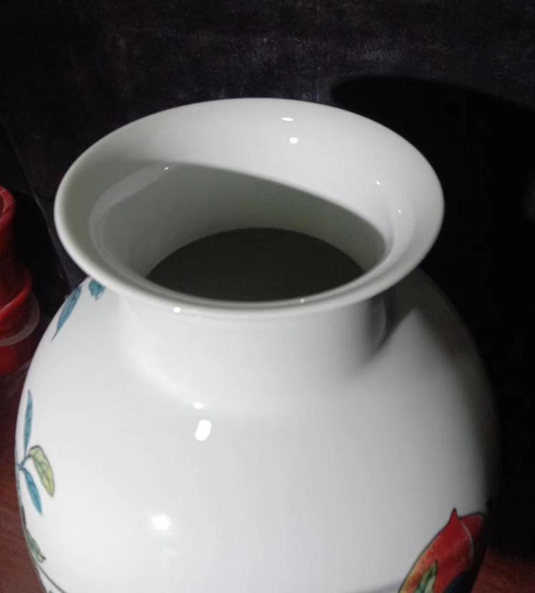 景德镇名家手绘装饰花瓶摆件(长寿图)